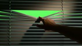 Menschliche Hand mit einer kleinen Kraft senkt den Jalousie Grüner Bildschirm stock footage