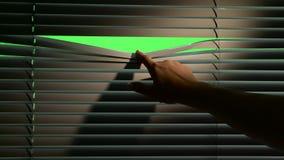 Menschliche Hand senkt den Jalousie ein kleines, wenn eine Laterne auf ihnen ist Grüner Bildschirm stock video