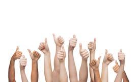 Menschliche Hände, die sich Daumen zeigen Lizenzfreie Stockfotografie