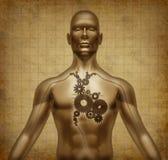 Menschliche Innerkarosserienfunktion tun altes grunge Pergament, stock abbildung