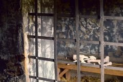 Menschliche Knochen im Gefängnis lizenzfreie stockfotos