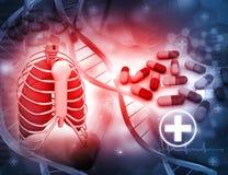Menschliche Lungen und Medizin Lizenzfreie Stockbilder