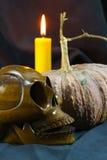 Menschliche Schädel und Kürbis auf schwarzem Hintergrund, Halloween-Tageshintergrund Lizenzfreie Stockfotografie