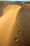 Menschliche Schritte im Sand in der Wüste Stockfotografie