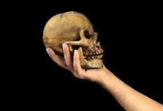 Menschlichen Schädel in der Hand halten Haus gebildet vom Geld im schwarzen Hintergrund (Shakespeares Hamlet-Szenenkonzept) lizenzfreies stockbild