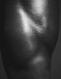 Menschlicher Körper-Abschluss oben Stockbild