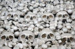 Menschlicher Knochen Stockfotografie