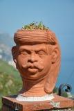 Menschlicher Kopf-Geformter Blumen-Potenziometer Stockfotografie