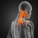 Menschlicher Röntgenfotografiescan Stockfotografie