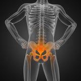 Menschlicher Röntgenfotografiescan Lizenzfreie Stockbilder