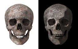 Menschlicher Schädel hergestellt vom rostigen Metallsatz Stockfotografie