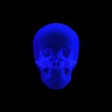 Menschlicher Schädel im Röntgenstrahl getrennt Stockfotografie