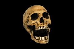 Menschlicher Schädel, lokalisiert auf schwarzem Hintergrund Stockfotos