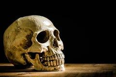 Menschlicher Schädel, lokalisiert auf schwarzem Hintergrund Stockfotografie