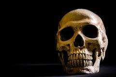 Menschlicher Schädel, lokalisiert auf schwarzem Hintergrund Lizenzfreies Stockfoto