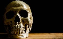 Menschlicher Schädel, lokalisiert auf schwarzem Hintergrund Lizenzfreies Stockbild