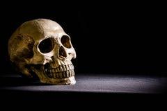 Menschlicher Schädel, lokalisiert auf schwarzem Hintergrund Stockfoto