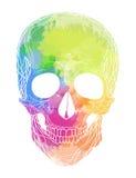 Menschlicher Schädel mit Regenbogenaquarell spritzt lizenzfreie abbildung