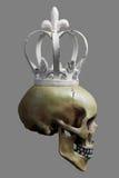 Menschlicher Schädel mit weißer Krone auf 50% Gray Background Stockfotos