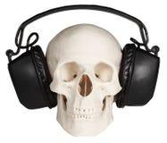 Menschlicher Schädel mit Musikkopfhörern auf Weiß Stockbilder