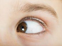 Menschliches Auge, das nach links schaut Lizenzfreie Stockfotos