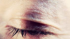 Menschliches Auge, Makro
