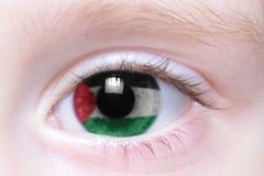 Menschliches Auge mit Staatsflagge von Palästina stockbilder
