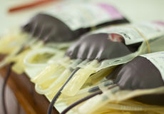 Menschliches Blut in der Lagerung Lizenzfreies Stockfoto