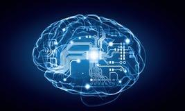 Menschliches Gehirn Lizenzfreie Stockfotos