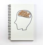 Menschliches Gehirn mit Pillen auf Notizbuch Lizenzfreie Stockfotografie