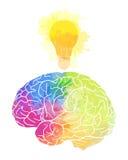 Menschliches Gehirn mit Regenbogenaquarell spritzt und eine Glühlampe lizenzfreie stockfotos