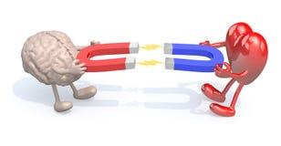 Menschliches Gehirn und Herz mit den Armen, den Beinen und Magneten auf Händen Lizenzfreies Stockfoto