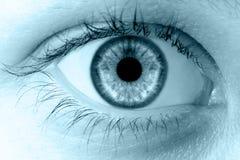 Menschliches makro blaues Auge Lizenzfreie Stockbilder