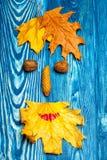 Menschliches mit Blumengesicht auf Holz Stockfotografie