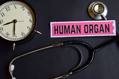 Menschliches Organ auf dem Papier mit Gesundheitswesen-Konzept-Inspiration Wecker, schwarzes Stethoskop lizenzfreies stockfoto