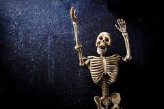Menschliches Skelett lizenzfreie stockbilder