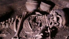 Menschliches Skelett, Schädel, Knochen, grub eine Beerdigung aus stock video footage