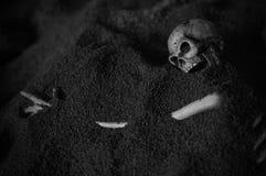 Menschliches Skelett - Schwarzweiss Stockbild
