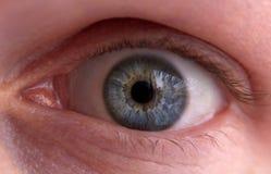 Menselijk blauw oog Stock Foto