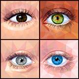 Menselijk die oog in veelhoekstijl wordt geplaatst stock illustratie
