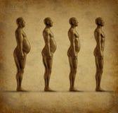 Menselijk gewichtsverlies grunge Stock Afbeelding