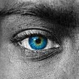 Menselijk gezicht met gebarsten textuur - het Globale verwarmen c Royalty-vrije Stock Foto