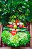 Menselijk gezicht van groenten en vruchten. Stock Afbeelding