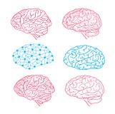 Menselijk hersenenpictogram, vectorillustratie Stock Fotografie