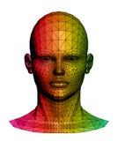 Menselijk kleurrijk hoofd. Vector illustratie Stock Afbeeldingen