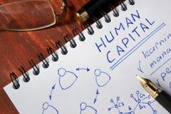 Menselijk Kapitaal stock foto's