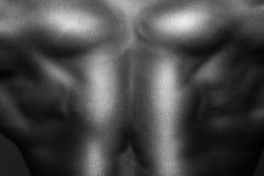 Menselijk Lichaam in Zwart-wit Royalty-vrije Stock Afbeeldingen