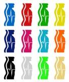 Menselijk lichaamsimpuls Royalty-vrije Stock Foto