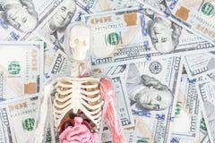 Menselijk lichaamsmodel met skelet en interne organen over ons de achtergrond van het dollargeld Overplantingsconcept Uitgaven va Royalty-vrije Stock Foto