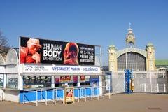 Menselijk lichaamstentoonstelling Royalty-vrije Stock Foto